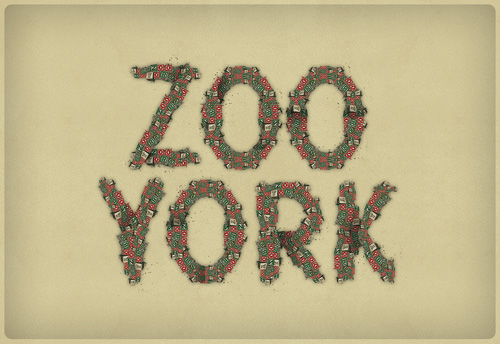 Zoo York Type