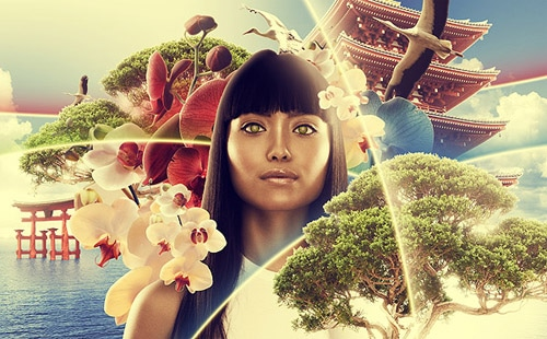 Create an Asian Inspired Illustration with Impact