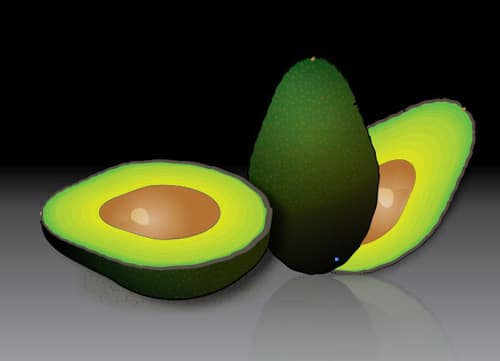 Create a Stylized Avocado in Illustrator