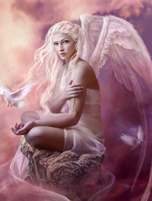 Doves by Marta Dahlig
