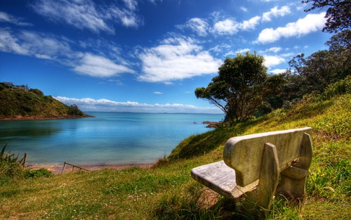 A beautiful lookout on Waiheke Island, Auckland By Chris Gin