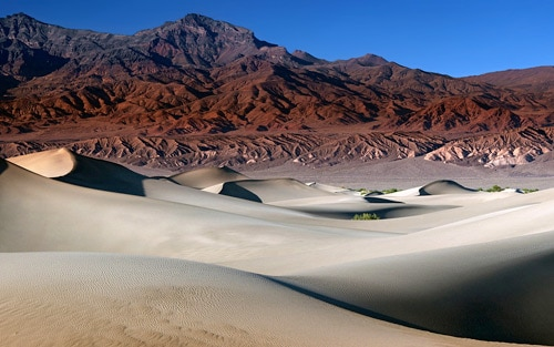 The Mesquite Dunes By MattGranz