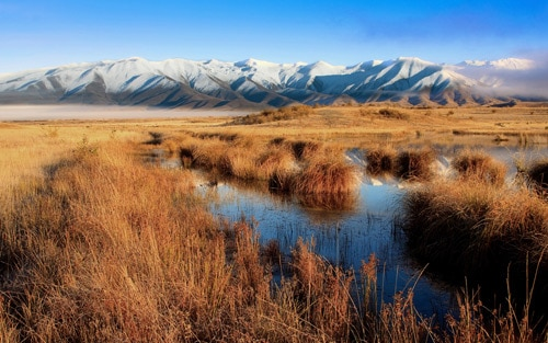 Lake Poaka, Twizel, New Zealand. Mackenzie Country By Chris Gin