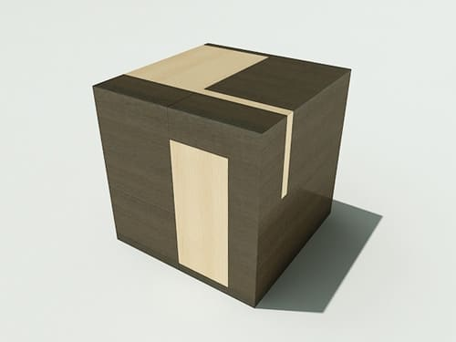 """The """"Brain Cube"""" project - 2008"""