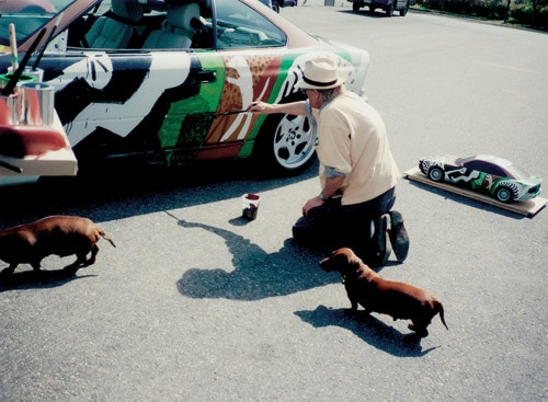 1995 BMW 850 CSi Art Car by David Hockney - David Hockney And Dogs