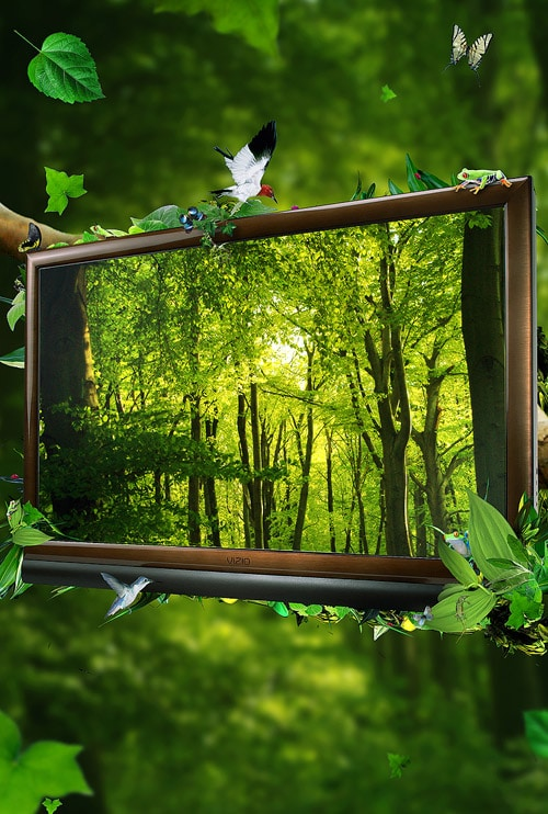 Create an Eco-Friendly Nature Themed Composition