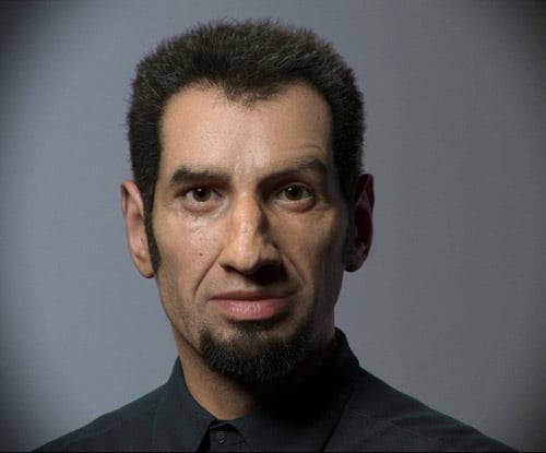 The portrait, Luc Bégin