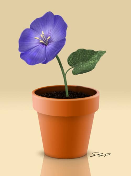 Create a Flowerpot in Photoshop