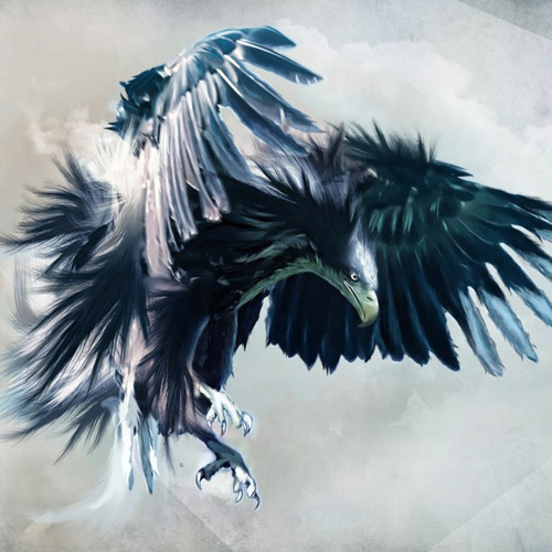 Eagle Illustration - iPad Wallpaper