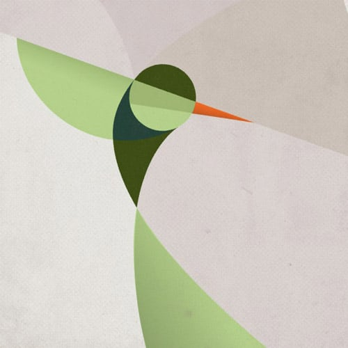 Hummingbird - iPad Wallpaper