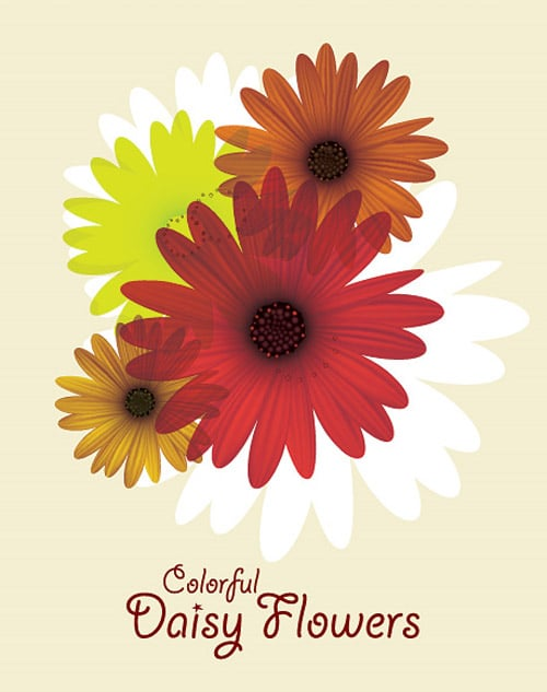 Colorful Daisy Flowers Vector Graph BY dryicons