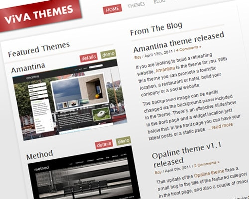 Viva Themes | Professional premium wordpress themes.