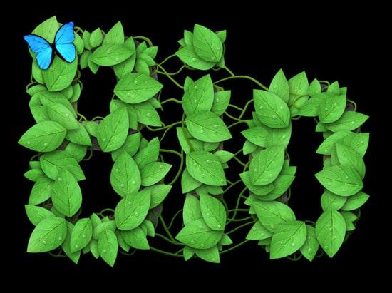 Logo Design Process and Walkthrough for BioThemes