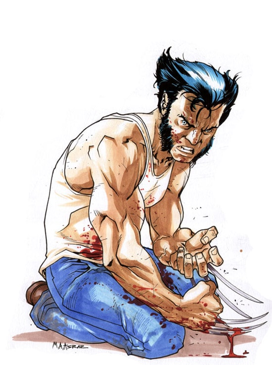 Wolverine by anjum
