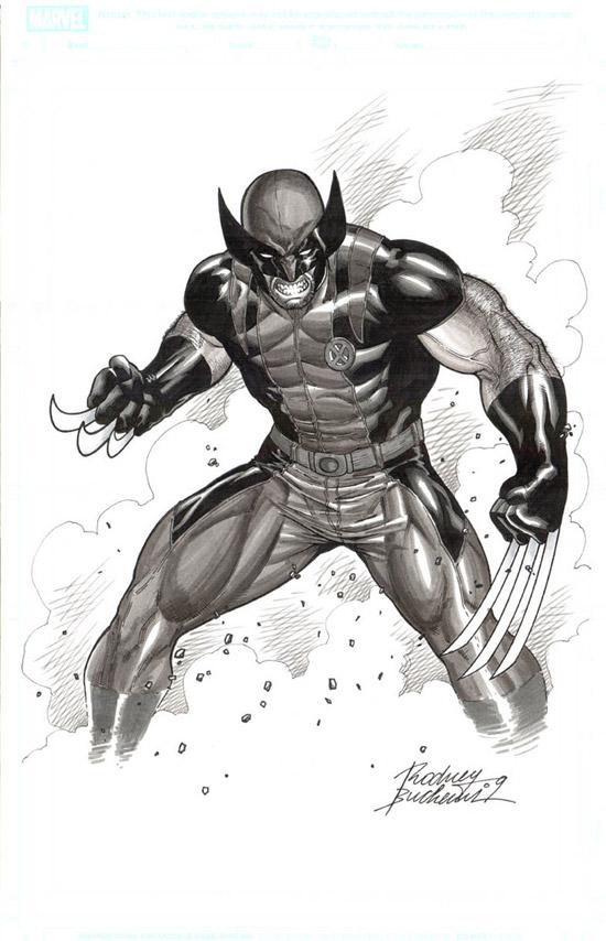Wolverine IV by Buchemi