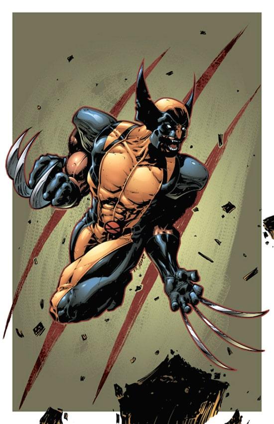 Wolverine by DashMartin