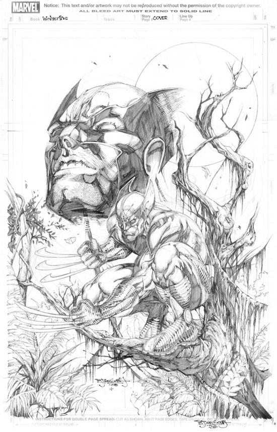 Wolverine by sjsegovia