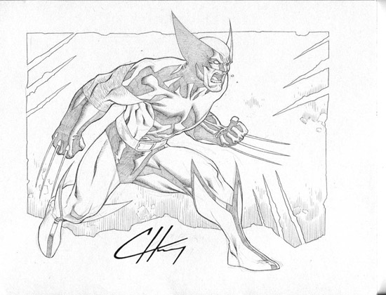 Wolverine by Clayton-Henry