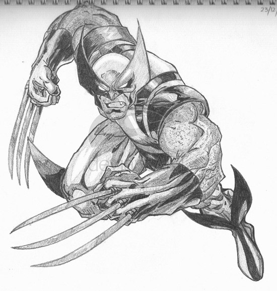 Wolverine by angellight07