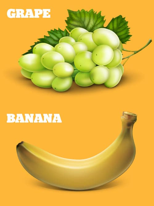 Grape & Banana Illustration