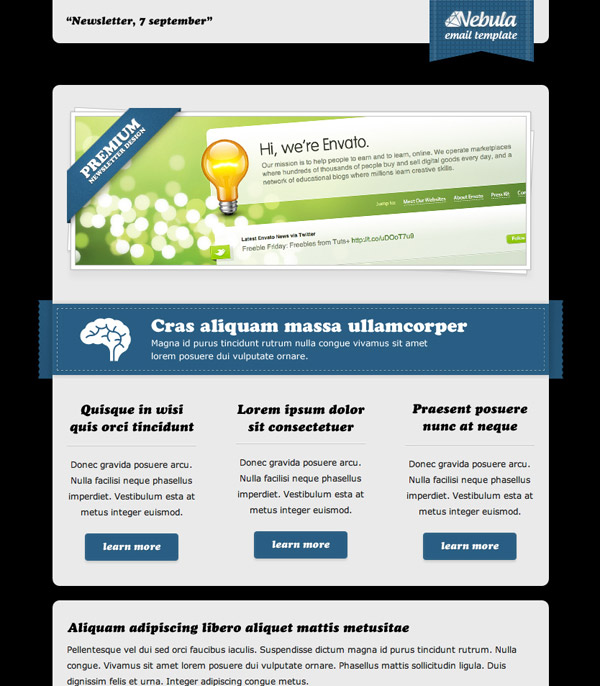 Email Newsletter Templates Hand Picked Premium Designs - Newsletter html template