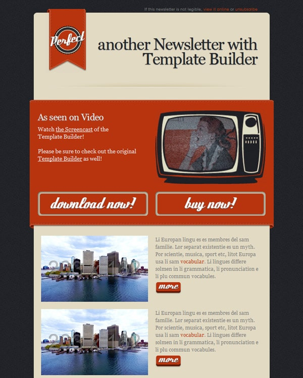 Perfect - another Newsletter with Template Builder