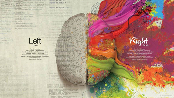 Brain Code Imagination Creative Artwork