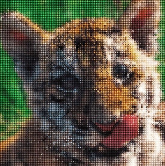 How to Create a Cross-Stitch of a Picture Using Adobe Illustrator and Phantasm CS