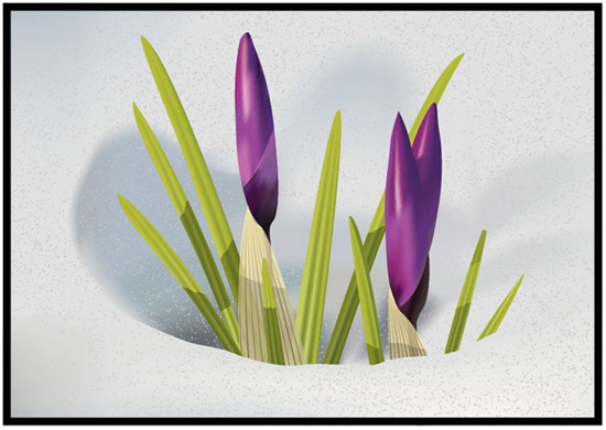 How to Illustrate Crocus Flowers in the Snow