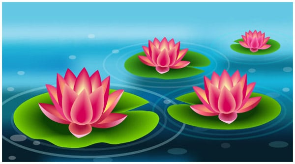 Create a Beautiful Lily Pad Using Adobe Illustrator