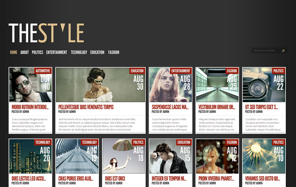 TheStyle WordPress Theme