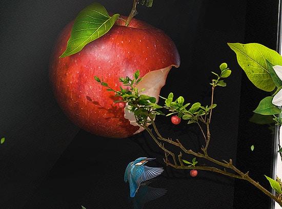 Mathieu Schatzler-Artist-11