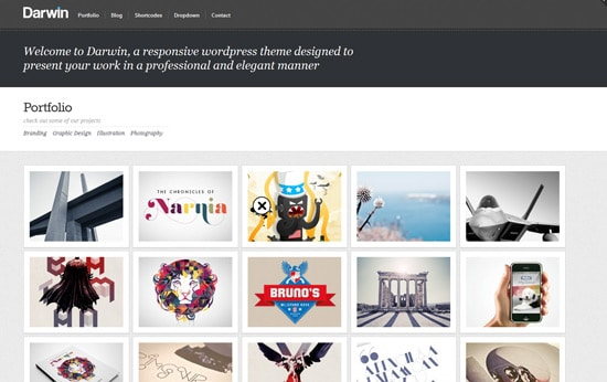 Darwin - Responsive WordPress Theme