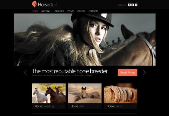 Horse-Club