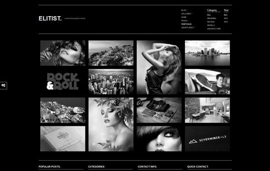 Elitist - Responsive Portfolio WP Theme