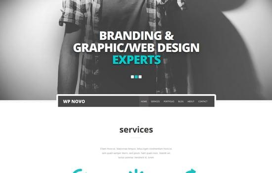 Novo - One Page Responsive WordPress Theme