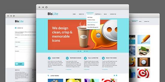 BisLite: Business Website PSD Templates