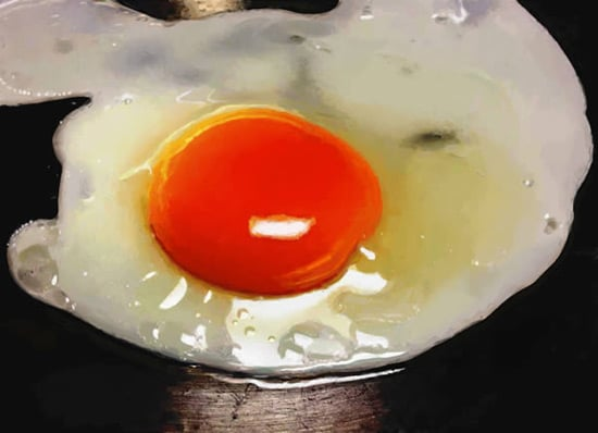 Create a Photo-Realistic Fried Egg Using Digital Painting Techniques