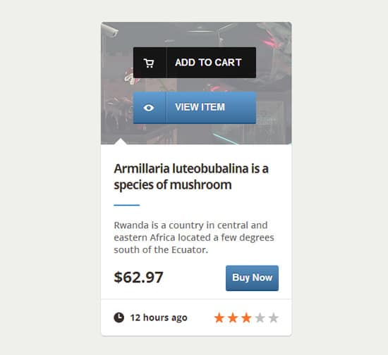 Create an E-Commerce Web Element with CSS3