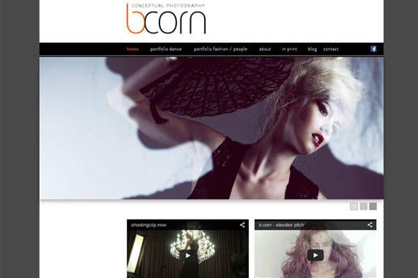 Brigitte-Corn-Portfolio-Page