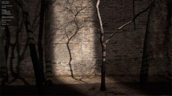 Rogier-Chang-Portfolio-Website