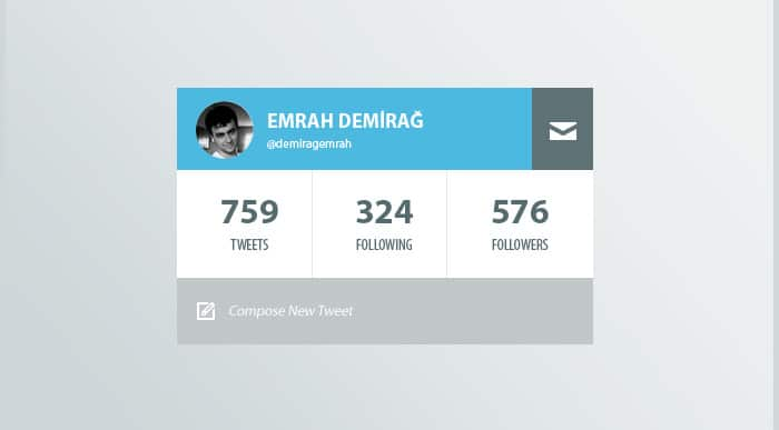 Twitter Profile Widget