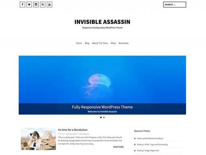 Invisible-Assassin