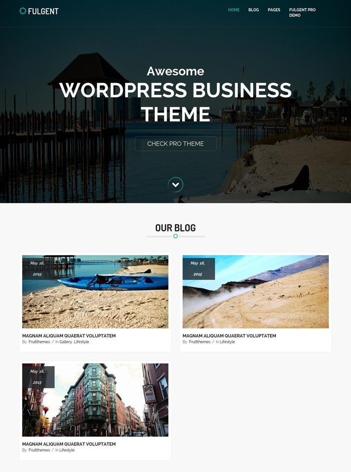 10-fulgent-free-wordpress-theme