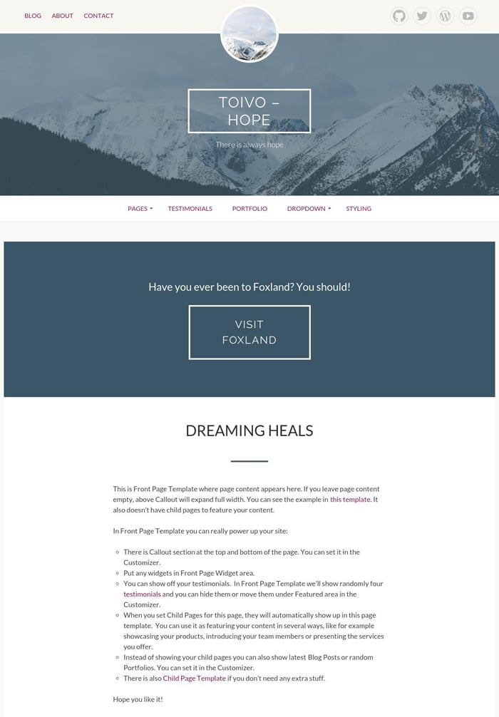 8-toivo-free-wordpress-theme