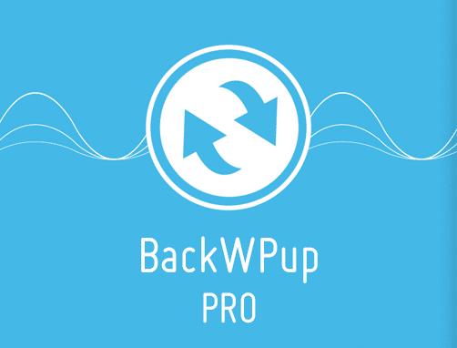 backwpup-pro-plugin