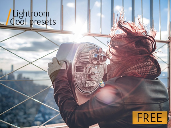 Premium Package: The Best Free Lightroom Presets - designrfix com