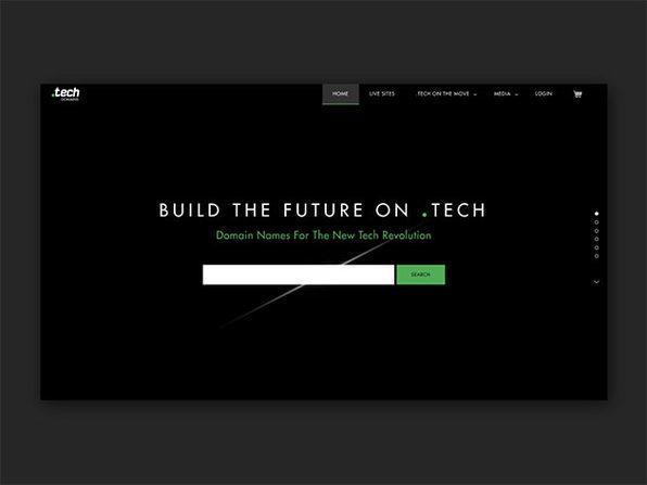 Radix '.tech' Domain Subscription